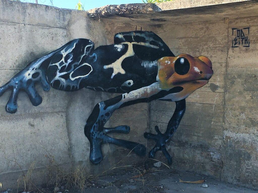 Urban art e natura sulle medianeras - Odeith